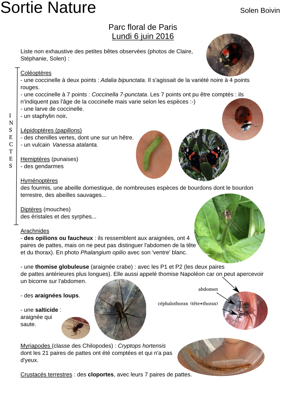 2016-06-06-sortie-nature-page001
