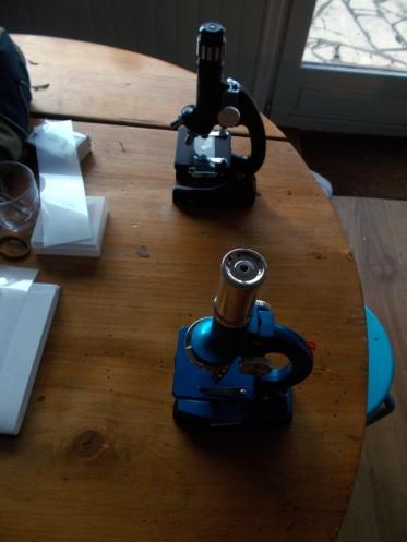 microscope3