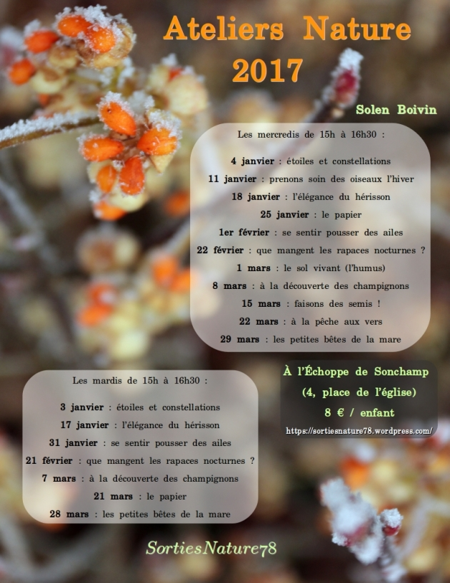 affiches-2017-02