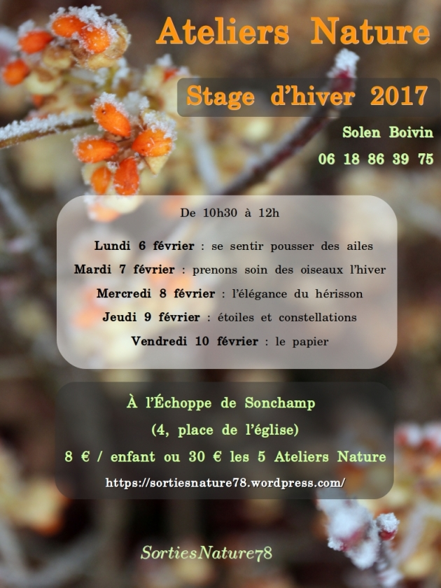 stage-nature-2017-02