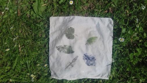 impression-de-feuilles-darbre-063