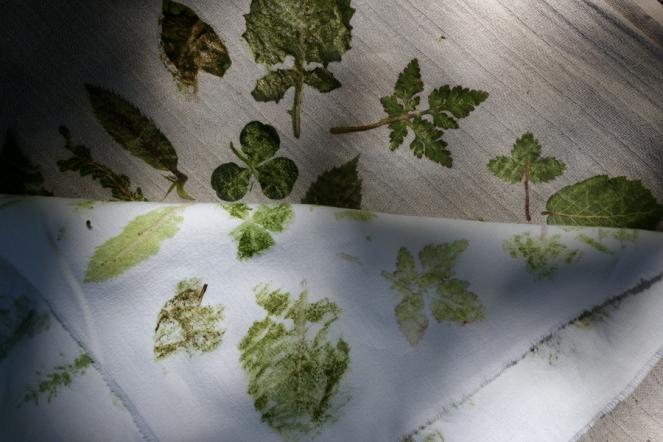 SortiesNature78-impression-feuilles