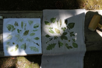 SortiesNature78-impression-feuilles2