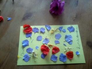 2017-07-13-SortiesNature78-fleurs2
