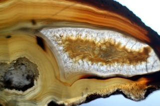 2017-07-20-SortiesNature78-agate