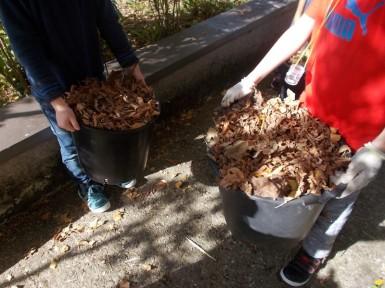 2017-10-13-Sortiesnature78-compost