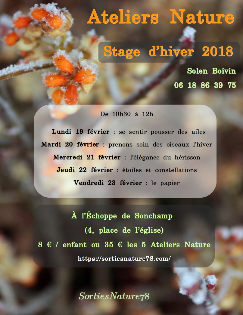 affiches-2018-02-stage