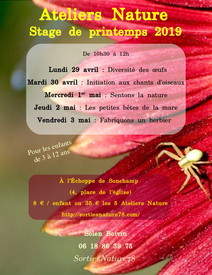 affiches-2019-04-stages